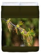 Catkin Time 5 Duvet Cover