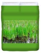 Cattail Green Duvet Cover