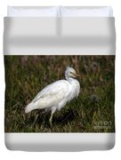 Cattle Egret  Duvet Cover