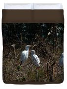 Cattle Egrets In A Pasture Duvet Cover