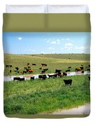 Cattle Graze On Reclaimed Land Duvet Cover