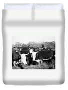 Cattle: Longhorns Duvet Cover