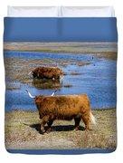 Cattle Scottish Highlanders, Zuid Kennemerland, Netherlands Duvet Cover
