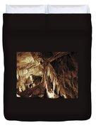 Cave Interior Duvet Cover