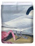 Cayenne Tern Duvet Cover by John James Audubon