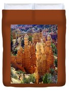 Cedar Breaks 1 Duvet Cover
