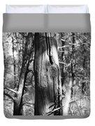 Cedar Fence Post Duvet Cover