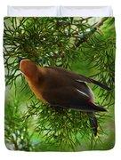 Cedar Waxwing Beauties 1 Duvet Cover