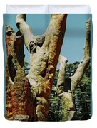Cedars Of God Jesus Tree  Duvet Cover