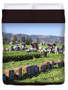 Celery Harvest Duvet Cover