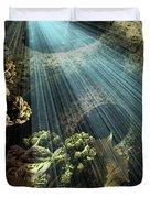 Cenote II Duvet Cover