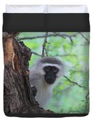 Chacma Baboon Duvet Cover