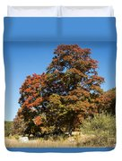Changing Maple Colors Duvet Cover