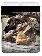 Charming Chipmunk Duvet Cover