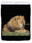 Cheeky Lion Duvet Cover