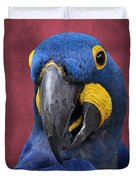Cheeky Macaw Duvet Cover