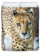 Cheeta Up Close Duvet Cover