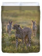 Cheetah Acinonyx Jubatus And Jackals Duvet Cover