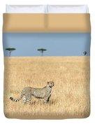Cheetah Acinonyx Jubatus In Plains Duvet Cover