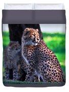 Cheetah Cub Duvet Cover