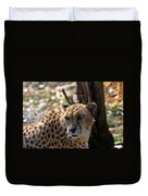 Cheetah Gazing Duvet Cover
