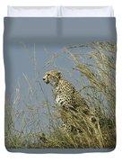 Cheetah Lookout Duvet Cover