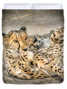 Cheetah Lounge Cats Duvet Cover