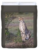 Cheetah Meditating Duvet Cover