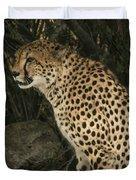 Cheetah Watching Duvet Cover