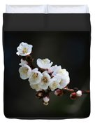 Apricot Blossom I Duvet Cover