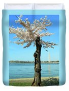 Cherry Blossom Portrait Duvet Cover