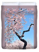 Cherry Blossom Trilogy II Duvet Cover