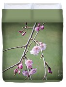 Cherry Blossoms In Early Spring Duvet Cover