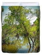 Cherry Creek Trail Study 3 Duvet Cover