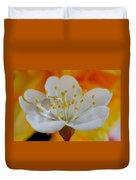Cherry Flower In The Spring Duvet Cover