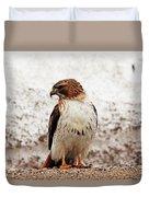 Chickenhawk Duvet Cover