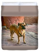 Chihuahua - Dogs Duvet Cover
