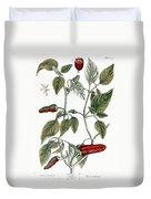 Chili Pepper, 1735 Duvet Cover