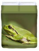 Chilling Tree Frog Duvet Cover by Roeselien Raimond