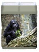 Chimpanzee Foraging Duvet Cover