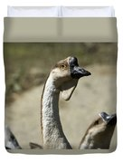 Chinese Geese Anser Cygnoides At Zoo Duvet Cover
