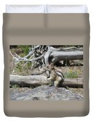 Chipmunk At Yellowstone Duvet Cover