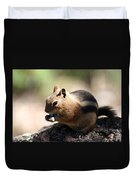 Chipmunk Eating A Piece Of Blue Candy Duvet Cover