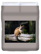 Chipmunk Portrait Duvet Cover