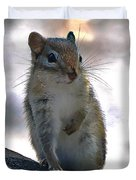 Chipmunk Up Close Duvet Cover