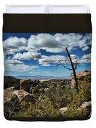 Chiricahua National Monument Duvet Cover