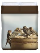 Chirping Swallows Duvet Cover