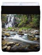 Chittenango Falls  Duvet Cover