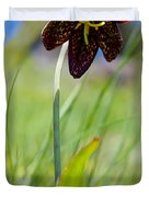 Chocolate Lily Two Duvet Cover