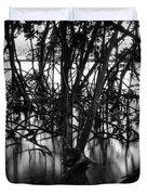 Chokoloskee Mangroves Duvet Cover